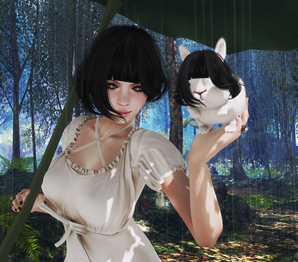 Hair Fair Contest 2016 - Summer Rain s